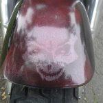 paint skull theme